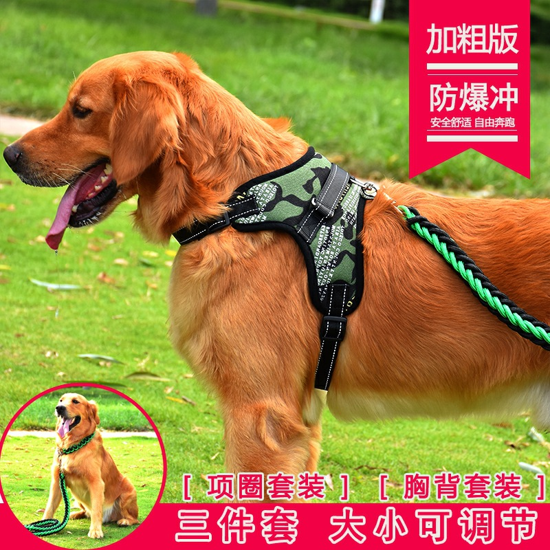 Large Dog Hand Holding Rope Cat Connection Dogs Walking Golden Retriever Puppy Cattle Large Puppy Dog Alaska Iron Chain-