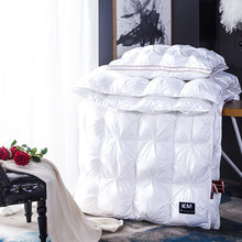 White goose/Goose Down Filler 3D Bread Duvet/Quilt/Comforter Bedding Winter Luxury Down quilt core Customizable(China)