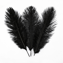 [US Warehouse] 10pcs Ostrich Feather Black free shipping warehouse
