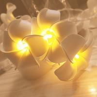 Frangipani-Tira de luces LED, guirnalda de flores de tela blanca y rosa, batería USB, para vacaciones, decoración de Navidad