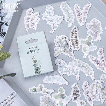 1 Uds. Cuenta de mano de Eucalyptus Globulus pegatinas de pared adhesivas para habitaciones de niños niñas dormitorio decoración del hogar