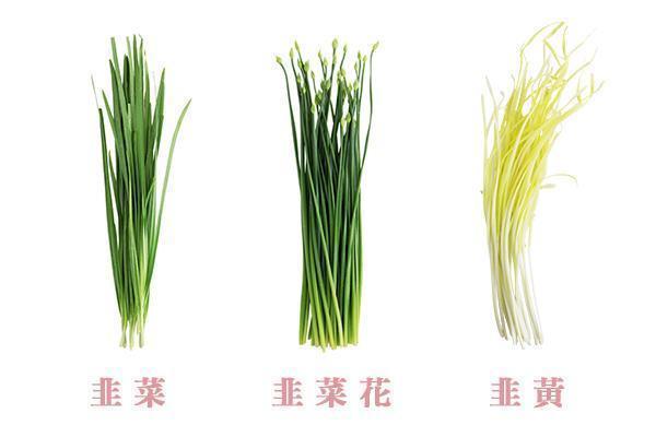 韭菜、韭菜花、韭黃有什么不一樣?春天該吃哪樣?