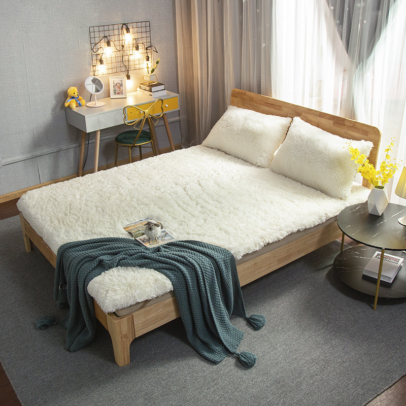 2020 New Arrival Cartoon Bed Linings Concise Style Bedding Set quilt Autumn and winter thick volcanic velvet warm mattress