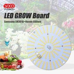 high tech led board Led Grow Light Board LM301B 244pcs LED Chip Full spectrum samsung 3000K Osram 660nm Veg/Bloom state