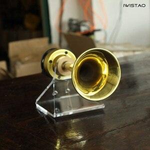 IWISTAO Long 4 pouces souper Tweeter 1 paire corne de cuivre cornes en laiton néodyme cuivre Film 6Ω 30W 625HZ-40kHz