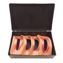 4 pcs Different Shape Lip Model Dental tools Dental Denture Lab Denture Laboratory Mouth Measuring Lip Measurement Tool 4 pcs different shape lip model dental tools dental denture lab denture laboratory mouth measuring lip measurement tool
