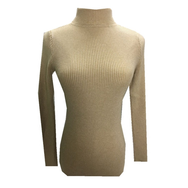 2019 Autumn Winter Women Knitted Turtleneck Sweater Casual Soft Polo-neck Jumper Fashion Slim Femme Elasticity Pullovers 2
