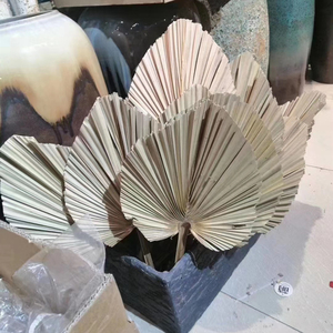 About 20*40CM/1PCS Dried Natural Plant Palm leaves,DIY Dry Flowers Palm Fan Leaf For Party Art Wall Hanging,Wedding Decoration