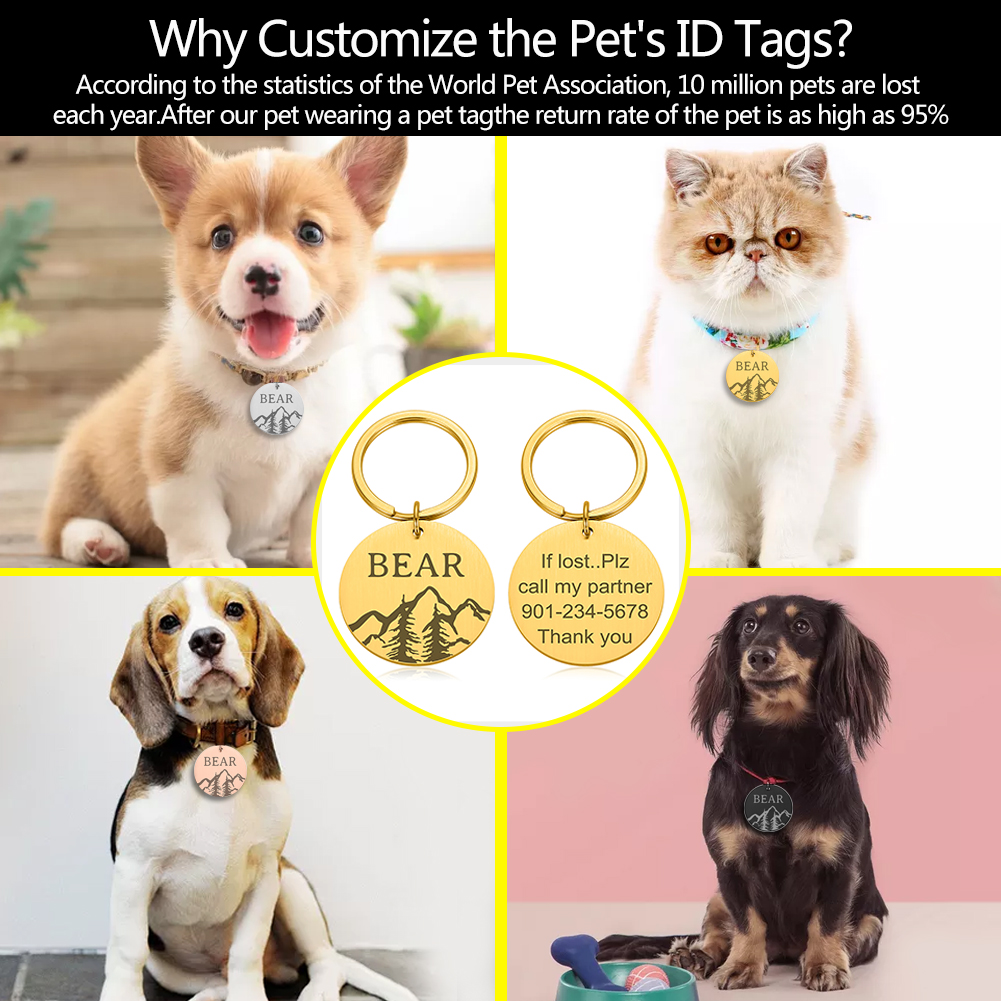 Collars, Harnesses & Leashes Dogs New Arrivals If lost please call my partner PET ID TAG  My Pet World Store