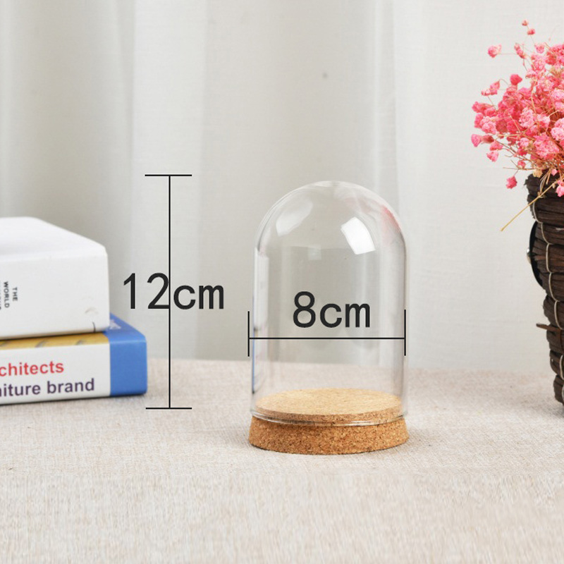 Glass Cover Dome Display Stand Wood Cork Base For Flower Succulent Plants Vase Handmade Home Decor Hout Kurk For Slaapkamer