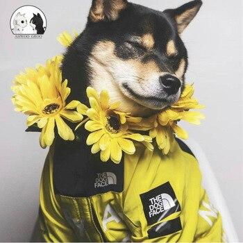 Комнатная собака Дождевик куртка одежда с защитой от ветра кошка собака куртка Модные Водонепроницаемый Светоотражающий ошейник для животных костюмы мелких домашних животных большой куртка для домашних животных