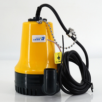 Mini Submersible Water Pump Pool Pond Agricultural Irrigation Marine Bilge Pump Engineering Plastics