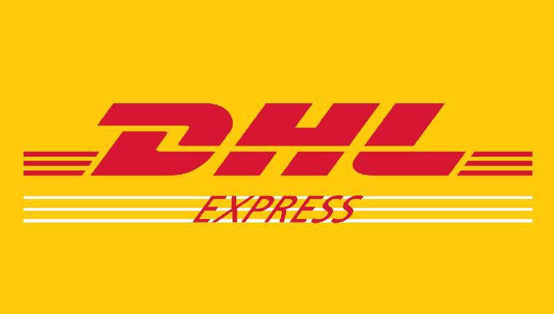 extra shipping cost for DHL or Fedex fast shipping
