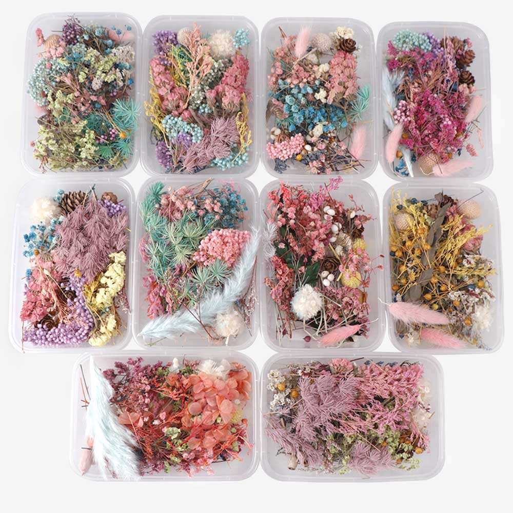 1 Box Real Nail Dried Flowers Leaf Nail Art Decor DIY Tips Dyeing Flowers Nail Stickers For Aromatherapy Candle Random Color