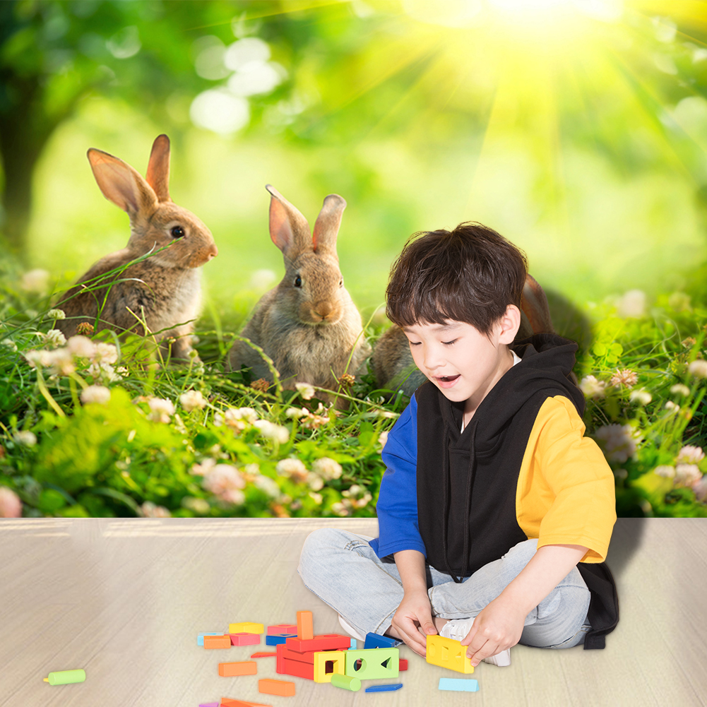 Easter Rabbit Printed Photo Backdrop Multi-functional Practical Classic Camera Audio Video Photography Background(China)