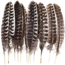 10pcs Natural pheasant feathers diy dream catcher tuekey feathers for jewelry making hat Wedding decoration marabou Pluma10-40CM