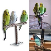 Bird Parrot Cage Toys Training T Perch Grinding Chewing Parakeet Wood Stand Drop Ship