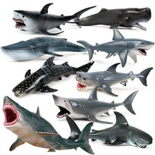 Matériel environnemental mer vie océan animaux marins mégalodon baleine grand requin modèle figurine PVC requin animaux Figurines(China)