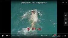 游泳视频教程合集