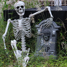 Human Party Halloween Decoration Poseable Full Size Skeleton Anatomical(China)