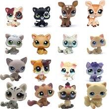 LPS CAT Old Pet Shop Mini gatito de pelo corto, colección de figuras raras de perro Husky, perro español, Collie, Gran Danés