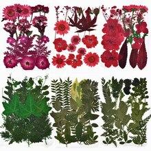 1 sac de vraies fleurs séchées pour bougie, résine époxy, pendentif, collier, fabrication de bijoux, artisanat, moule en Silicone bricolage accessoires