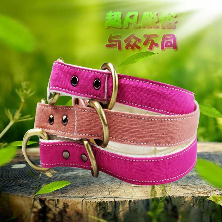 Dog Neck Ring Snake Proof Punch Collar Large Dog Collar Puppy Pet Supplies Hand Holding Rope P Pendant