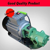 Cast Iron WCB 30 Series Gear Oil Pump Cast Iron Oil Transfer Pump With Normal Motor