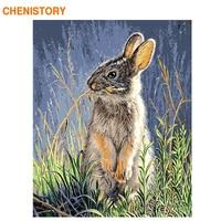 CHENISTORY フレーム 60 × 75 センチメートル DIY 数字で数値キットウサギの動物アクリル数字で家の装飾のため壁塗料