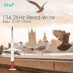 Image 3 - 40pcs ISO RFID Chip 2*12mm Plastic Injector Animal Id Tag Pet Microchips Syringe