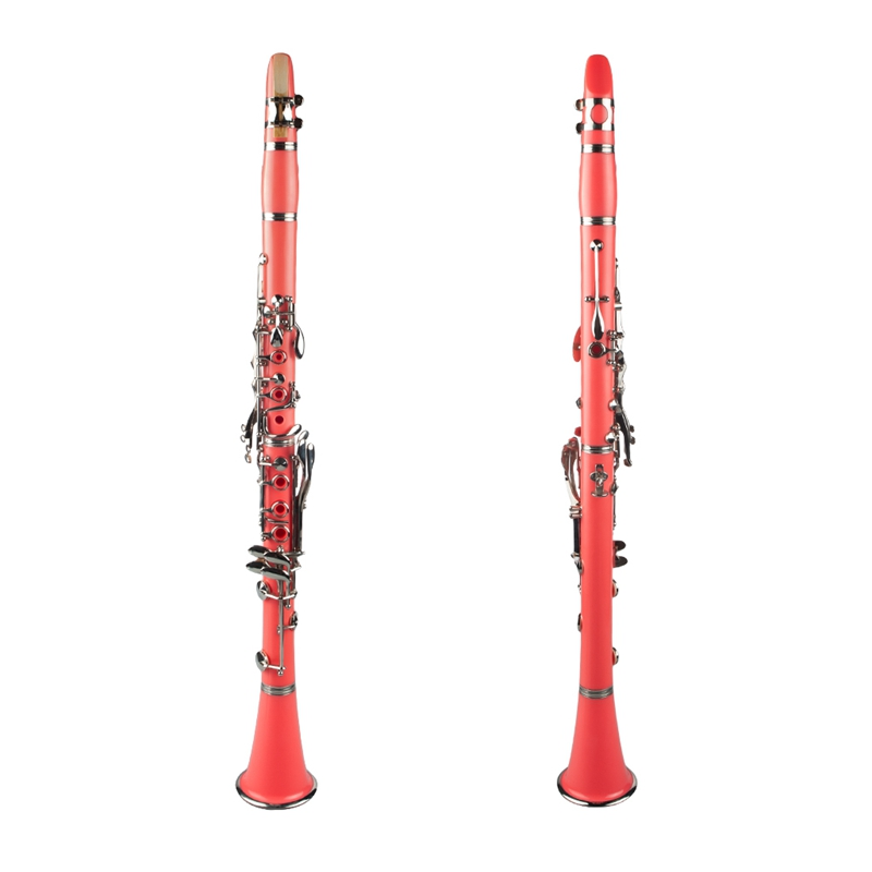 NAOMI ABS B Display Clarinet with 2 Barrel Protector Bracket Pocketbook Mouthpiece 10 Reed and More