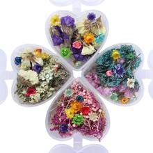 1Box Epoxy Filler Real Dried Flower Mixed 3D Nail Stickers Decor Herbarium Craft N1HA(China)