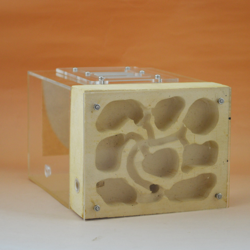 Plaster Ant Nest Acrylic Ant Farm Ants Queen House Insect Cage Anthills font b Pet b