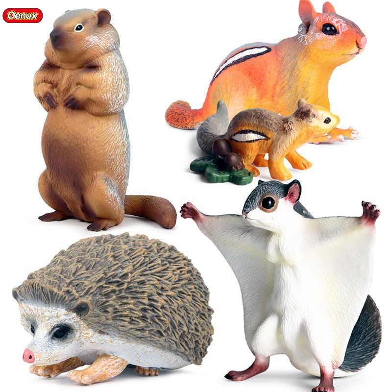 N\A Tvvudwxx juguete de animales peque/ños juego de juguetes para masticar para dientes molares bolas de rat/án y bolas de hierba para h/ámster sirio//enano masticar juguetes para dientes de h/ámster