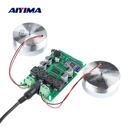 AIYIMA 2 Inch Audio Portable 25W Resonance Vibration Speaker TPA3118 Bluetooth 5.0 Power Amplifier Sound Speaker DC 12V 5A