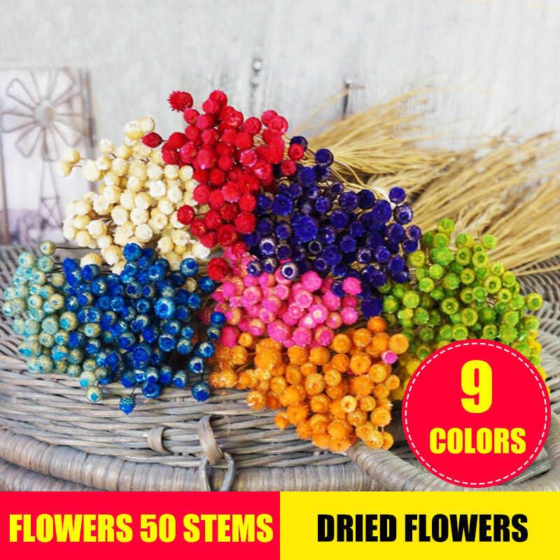Kwiaty 50 łodyg suszone kwiaty do aranżacji pakiet strona główna fotografia dekoracyjna rekwizyty ręcznie suszenie powietrzem XHC88