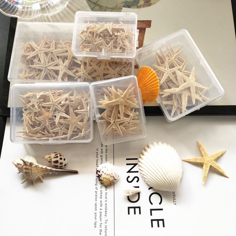 Hot 1 Box 1-5cm Natural Starfish Seashell Beach Craft Natural Sea Stars DIY Beach Wedding Decoration Crafts Home Decoration
