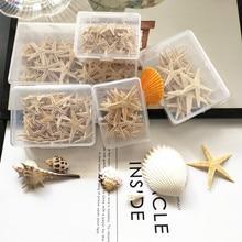 Hot 1 Box 1 5cm Natural Starfish Seashell Beach Craft Natural Sea Stars DIY Beach Wedding Decoration Crafts Home decoration