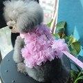 Милая элегантная жилетка с изображением собаки  кошки  жгут с галстуком-бабочкой  кружевная и короткая юбка  платье принцессы с подходящим п...