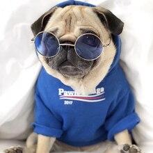 Bluza dla psa w stylu Balenciaga