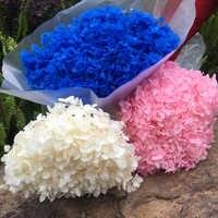 Консервированная Гортензия Анна 16-20 см/голова натуральные сухоцветы, сделай сам вечный Свадебный брак цветочный, домашний подарок коробка ...