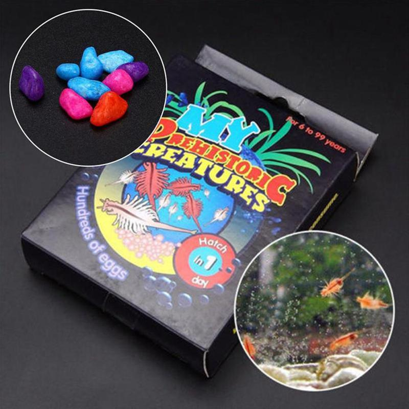 1 Set Funny Grass Doll Toy Diy Pet Sea Life Water Growing Kit Creative Sea Spirit / Fish Egg Water Growing Toy Diy Puzzle Toy