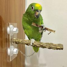 Cockatiels восхождение игрушка попугай стоящий шкаф деревянный