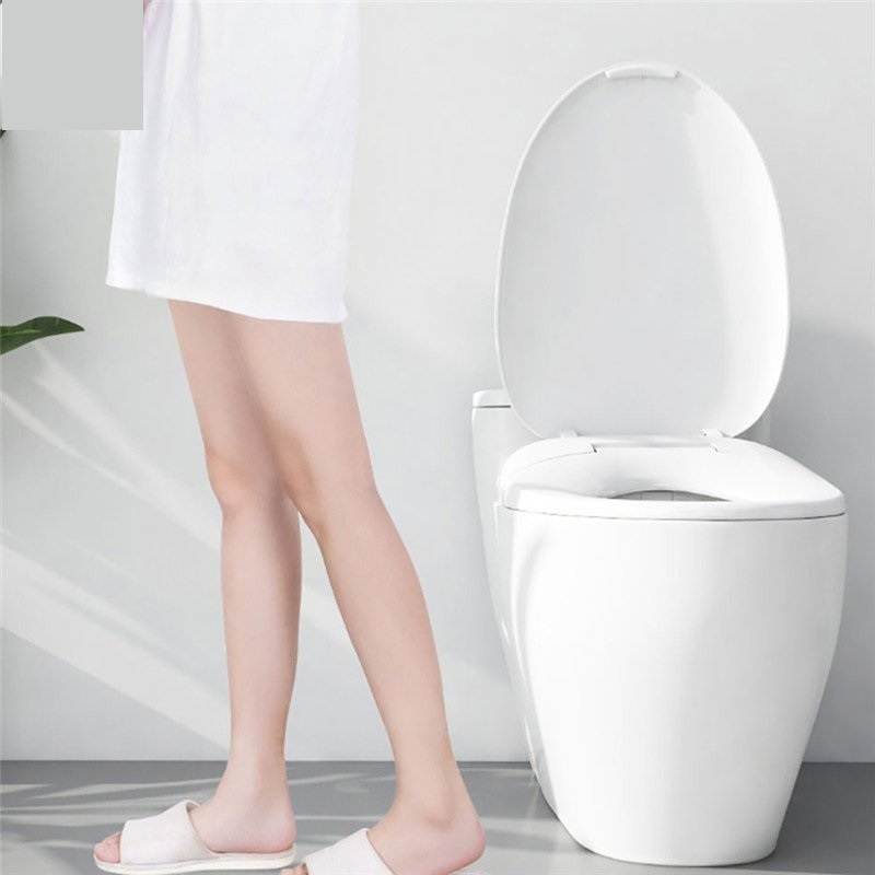 Whale Spout Pro IPX4 Waterproof Washing Intelligent Temperature APP Smart Toilet Cover Seat With LED Night Light