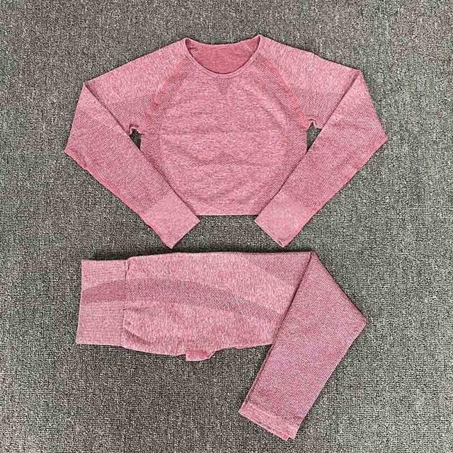 Women Yoga Set Seamless Gym Clothing Fitness Suit Workout Sets Yoga Suit Women Fitness Set Women Women s Sportswear Suit