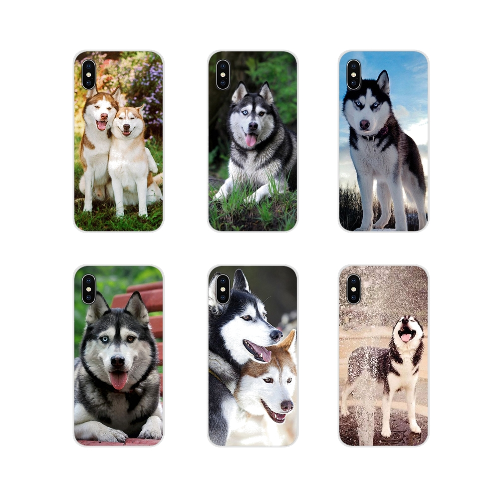Aladdin <font><b>Siberian</b></font> <font><b>Husky</b></font> Dog Accessories Phone Cases Covers For Xiaomi Redmi 4A S2 Note 3 3S 4 4X 5 Plus 6 7 6A Pro Pocophone F1 image