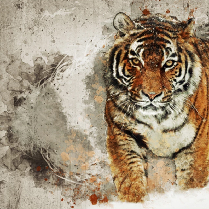 Custom Photo Wallpaper Tiger Animal Wallpapers 3d Large Mural Bedroom Living Room Sofa Tv Backdrop 3d Wall Murals Wallpaper Roll Buy At The Price Of 8 44 In Aliexpress Com Imall Com