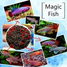 Rozwijaj magiczną glebę + woda = ryby kawior żywy zbiornik suma lampa widz Killifish jaja gleba wylęgowa ziemia zwierzęta zabawki edukacyjne