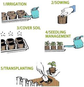 Image 3 - AMKOY Bloque de suelo de plántulas de 30mm Jiffy, clavijas de arranque, arranque de semillas, profesional, para jardín, evita el bloqueo de raíces