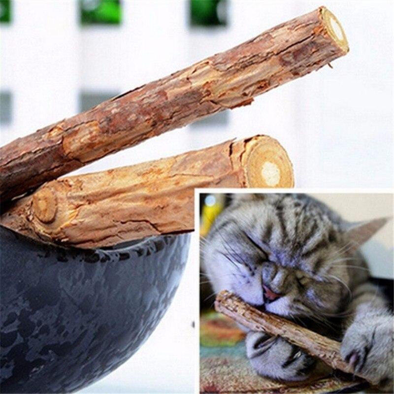5PCS/Set Pet Cat Kitten Chew Stick Toy Catnip Molar Actinidia Fruit Matatabi Cat Snacks Sticks